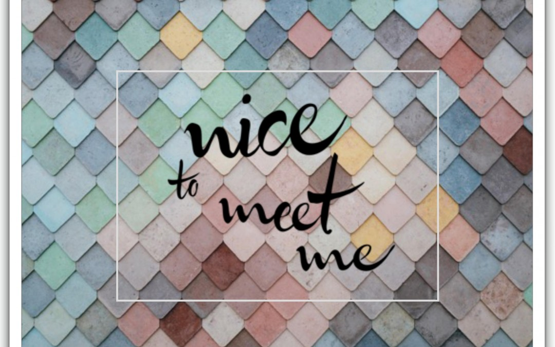 En Nice To Meet Me estamos de estreno
